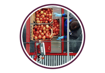 HMI Solution for Food Process
