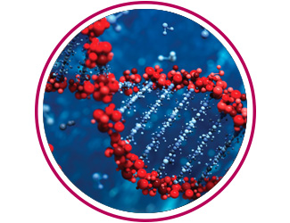 Data Acceleration Solution for Next-Generation Sequencing